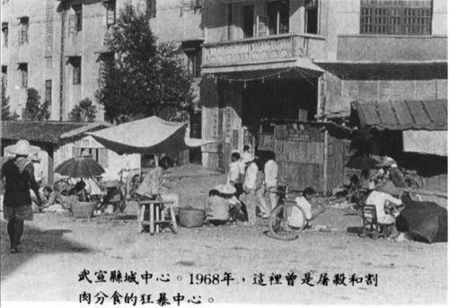 作家郑义所著《红色纪念碑》一书中记载的文革期间发生人吃人事件的广西武宣县